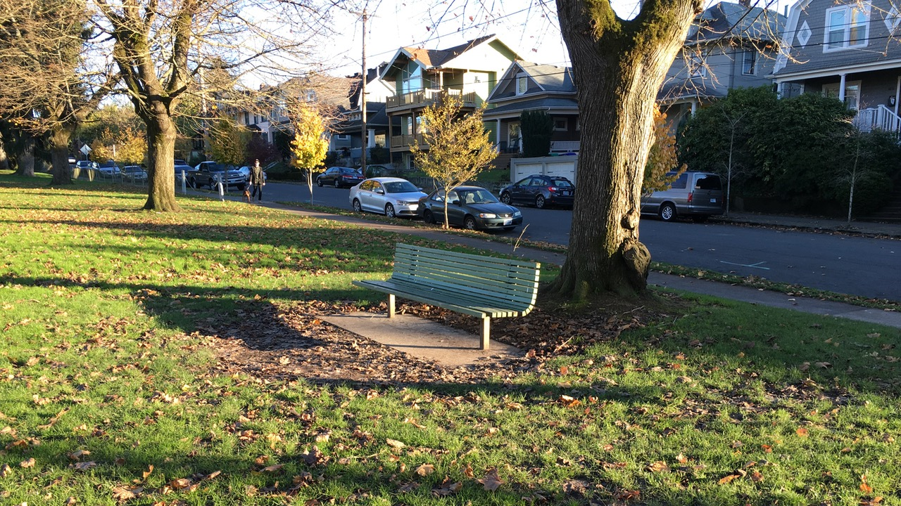 Park bench with neighborhood homes in the background